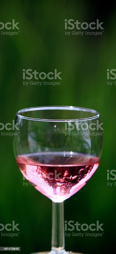 Glass Of Rose' Wine In The Garden stock photo