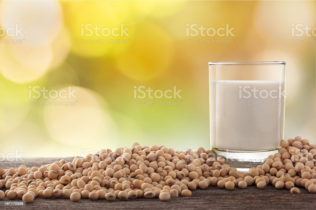 Glass of soy milk and soybean in garden background. stock photo