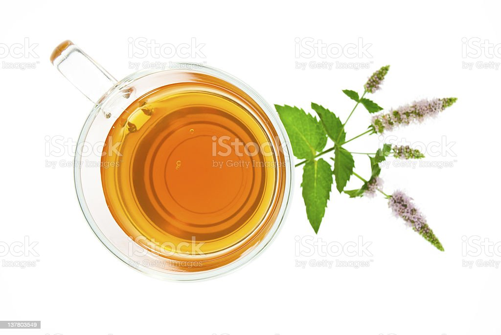 Glass of tea and peppermint flowers royalty-free stock photo