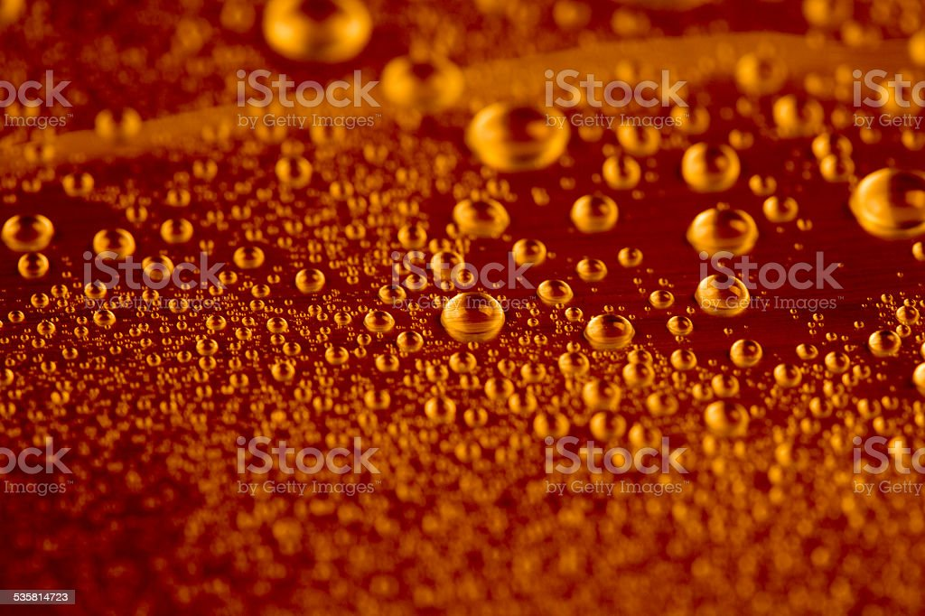 Glass of the fresh cold beer with bubbles and froth stock photo