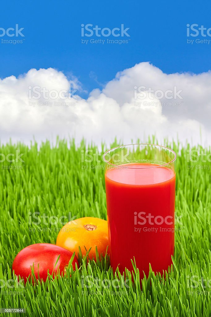 Glass of tomato juice on the grass stock photo