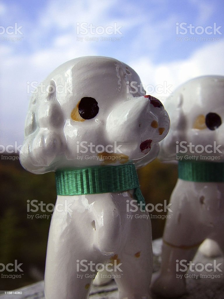 Glass Poodle royalty-free stock photo