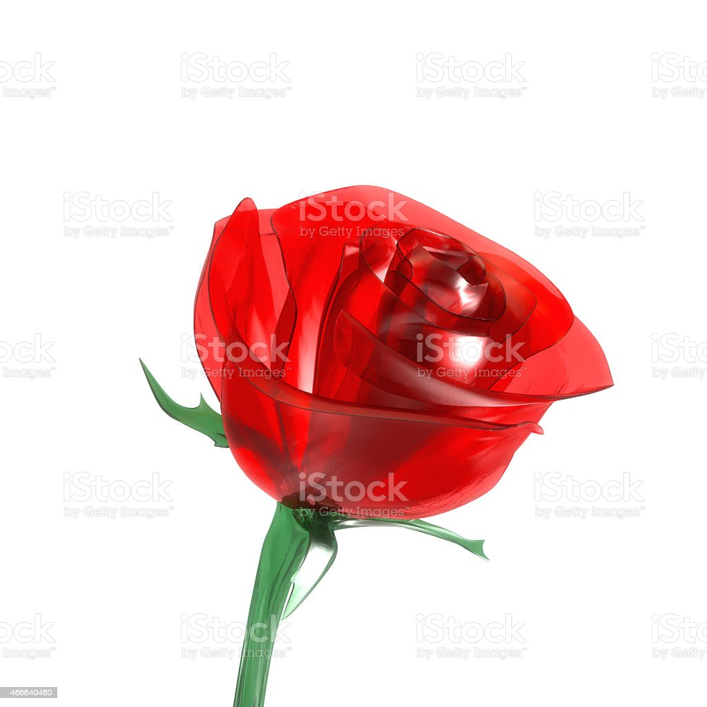 glass red rose on white background stock photo
