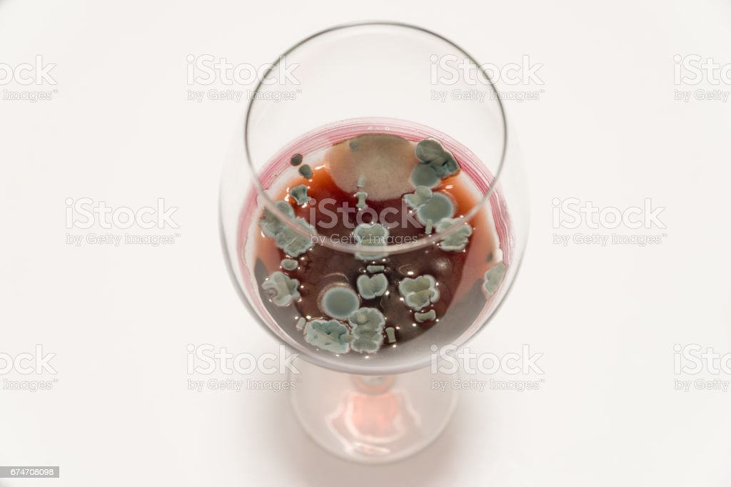 Glass with moldy red wine on white table stock photo