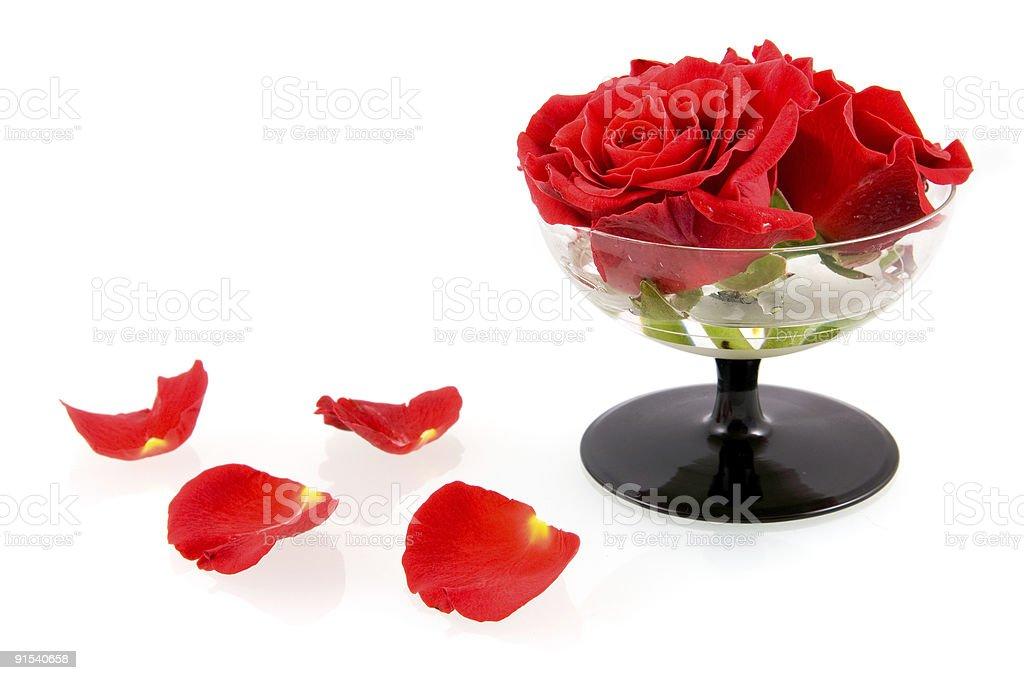 Verre avec des roses rouges et feuilles photo libre de droits
