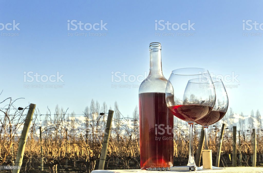 Glasses and bottle of ros? wine royalty-free stock photo
