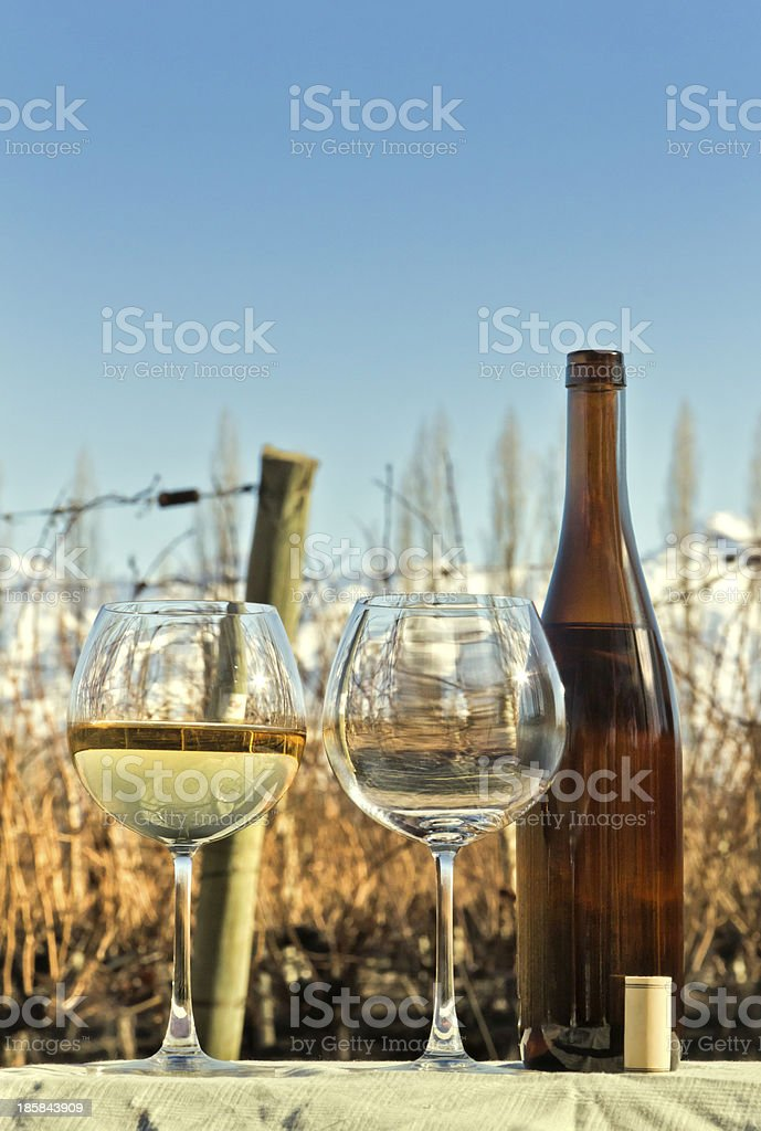 Glasses and bottle of white wine royalty-free stock photo