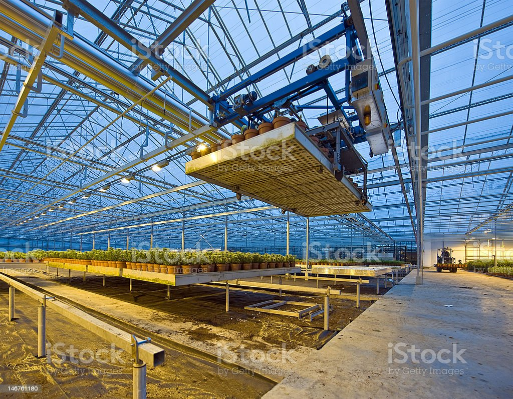 Glasshouse automation royalty-free stock photo