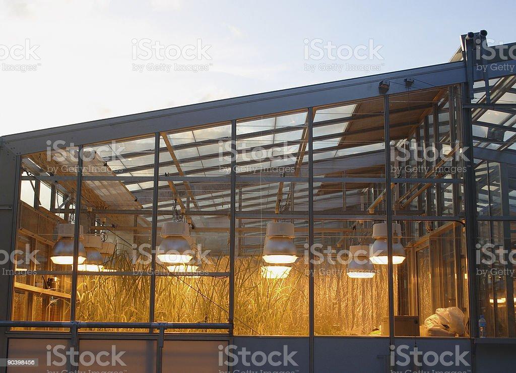 glasshouse technology royalty-free stock photo