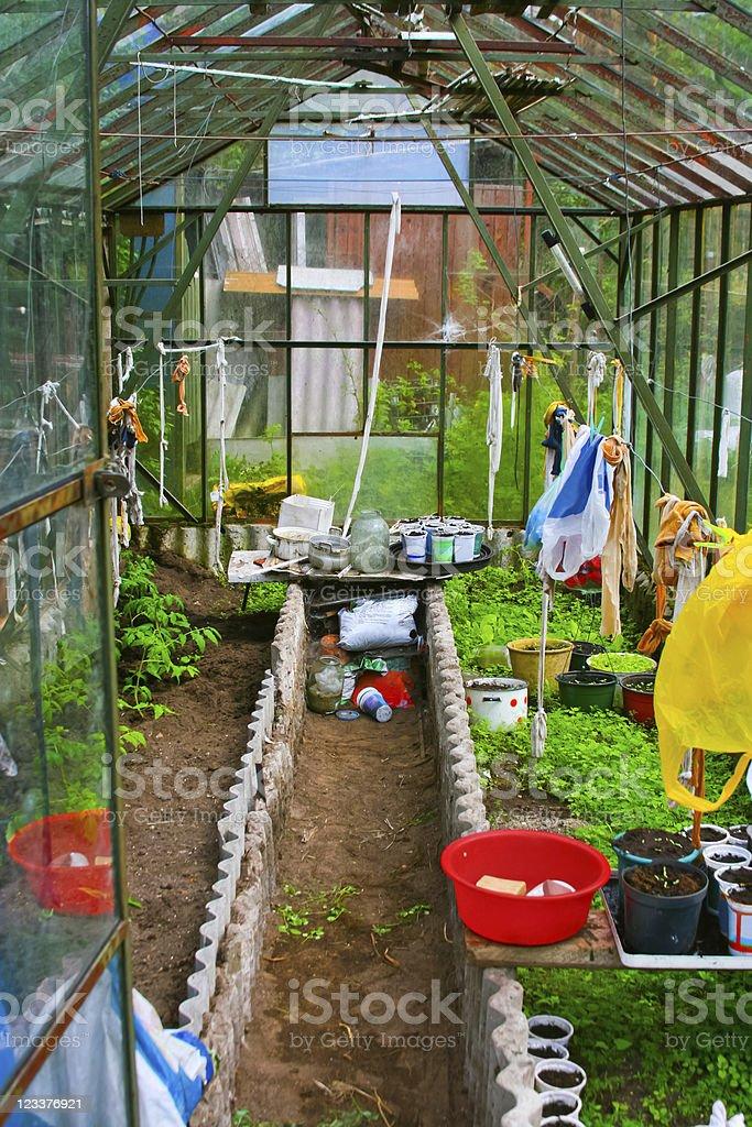 Glassy greenhouse in the garden stock photo