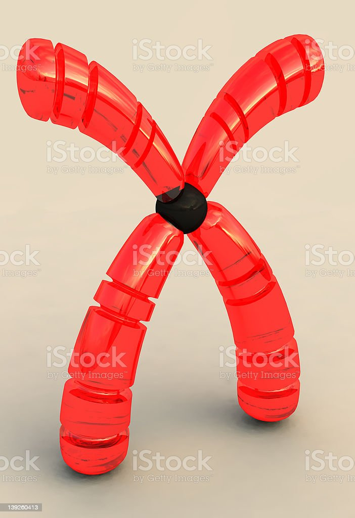 Gleaming red chromosome royalty-free stock photo