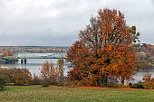 Glienicke Bridge in autumn