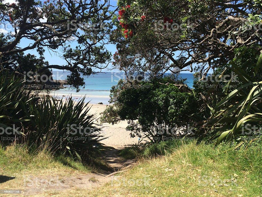 Glimpse of Beach royalty-free stock photo