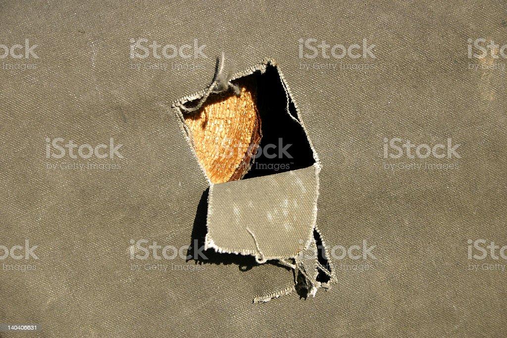 glimpse of wood stock photo