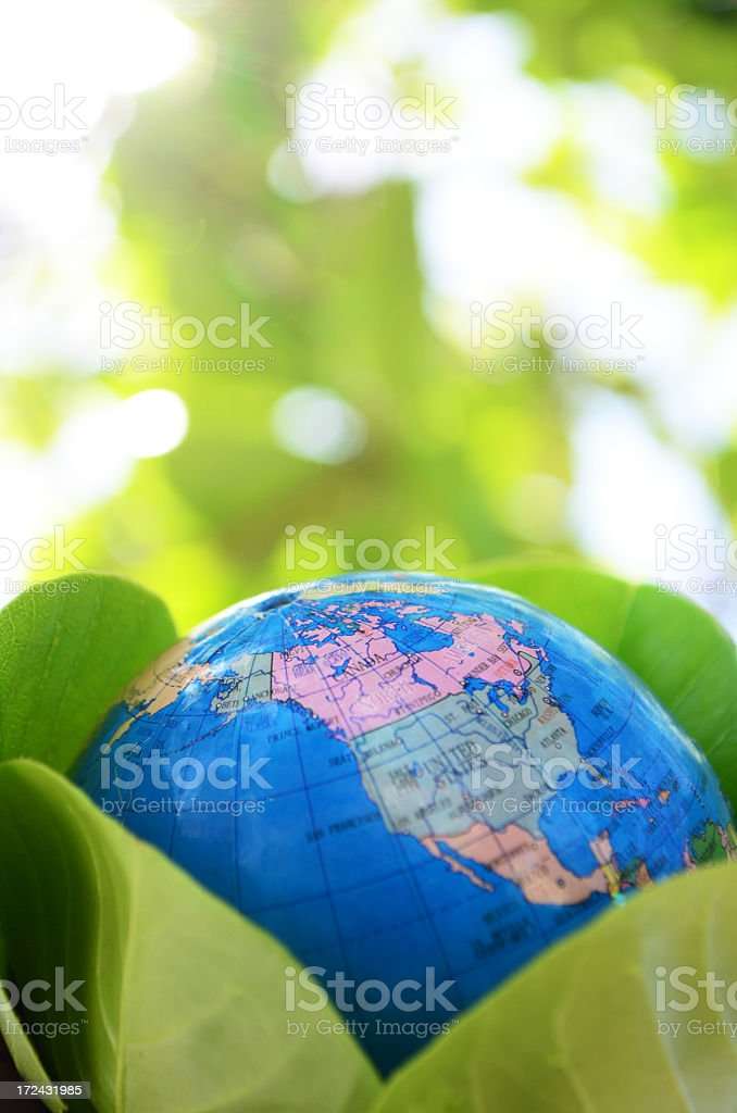 global environment concept with globe and nature stock photo