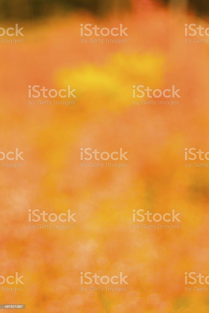 Global warming background royalty-free stock photo