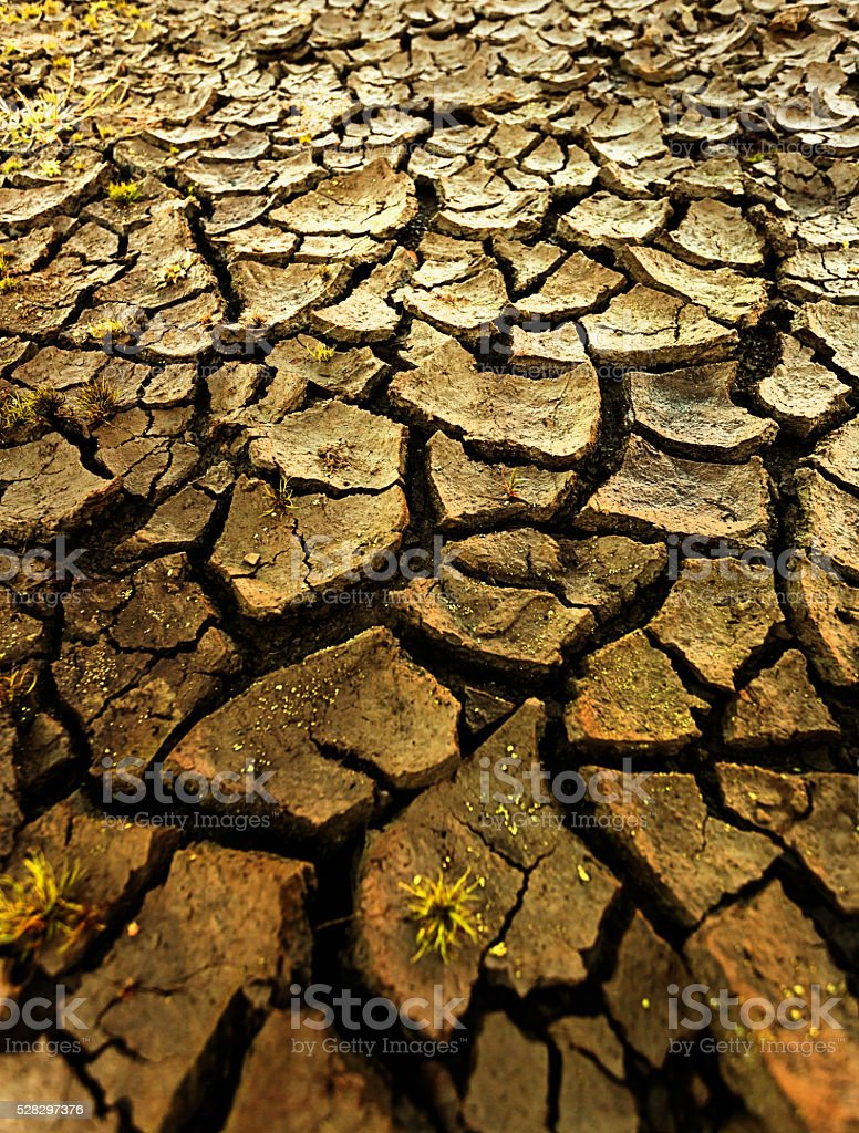 Global warming: Dried up, drought-stricken river bed stock photo