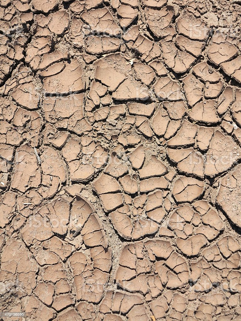 Global warming - parched earth stock photo