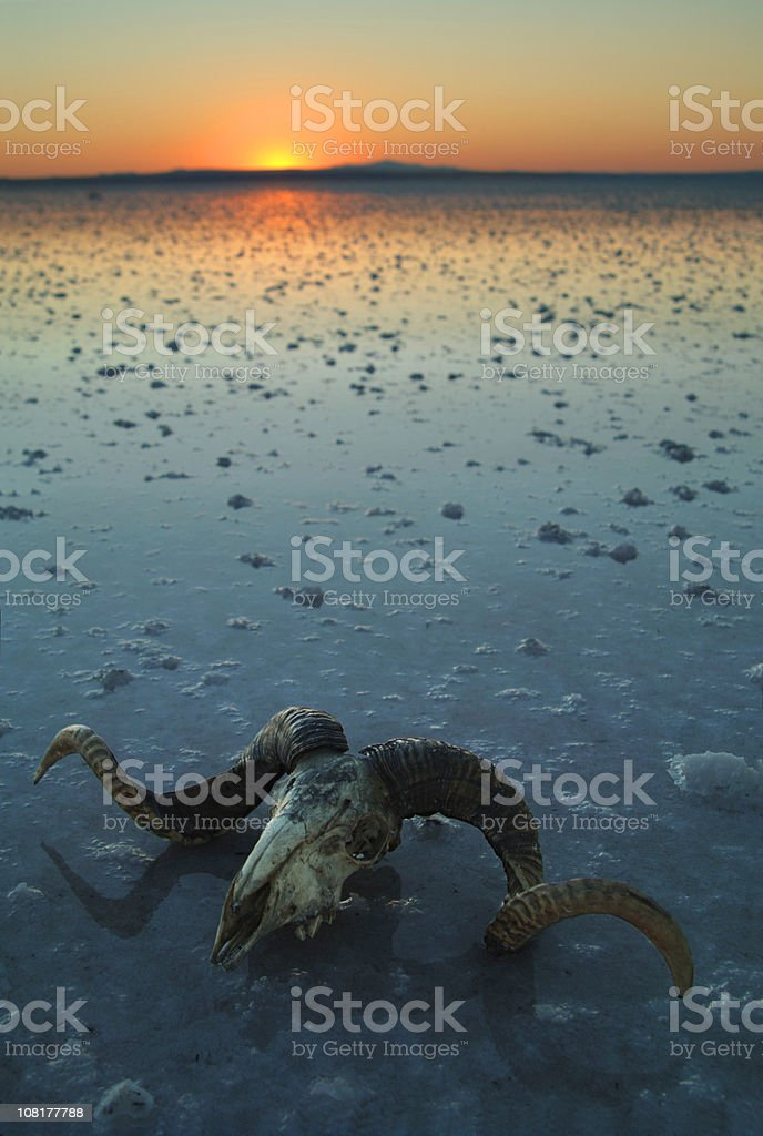 global warming... royalty-free stock photo