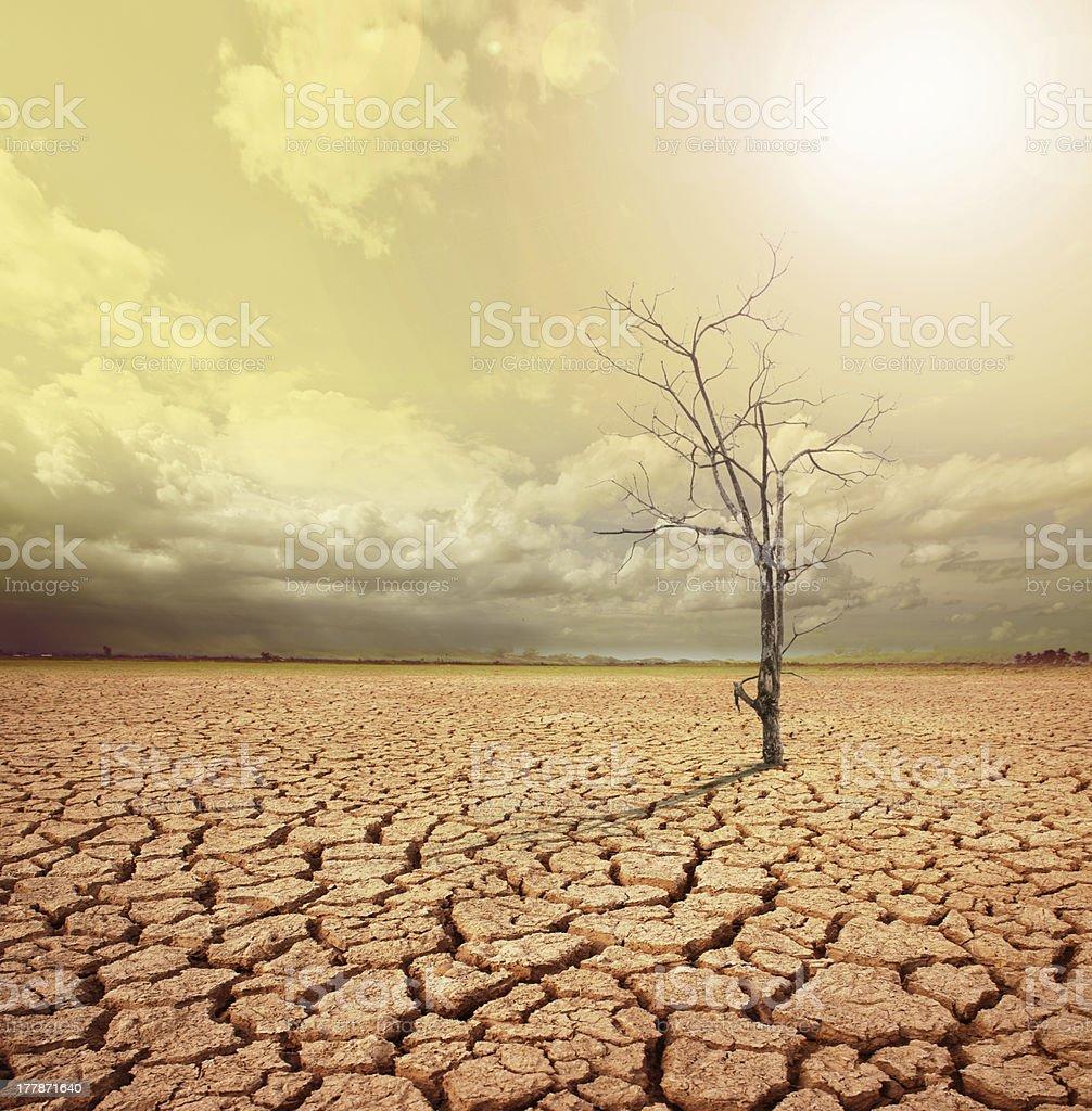 global warming. stock photo