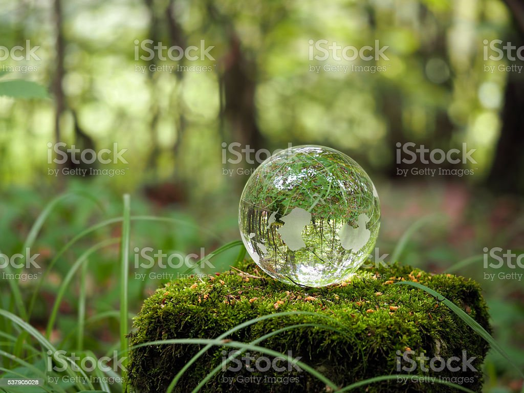 Globe in the forest. Ball on a stump with moss stock photo