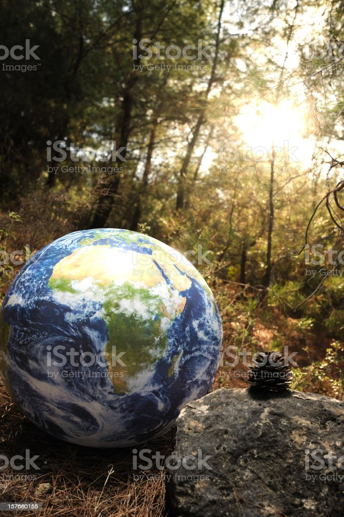 Globe in the forest royalty-free stock photo
