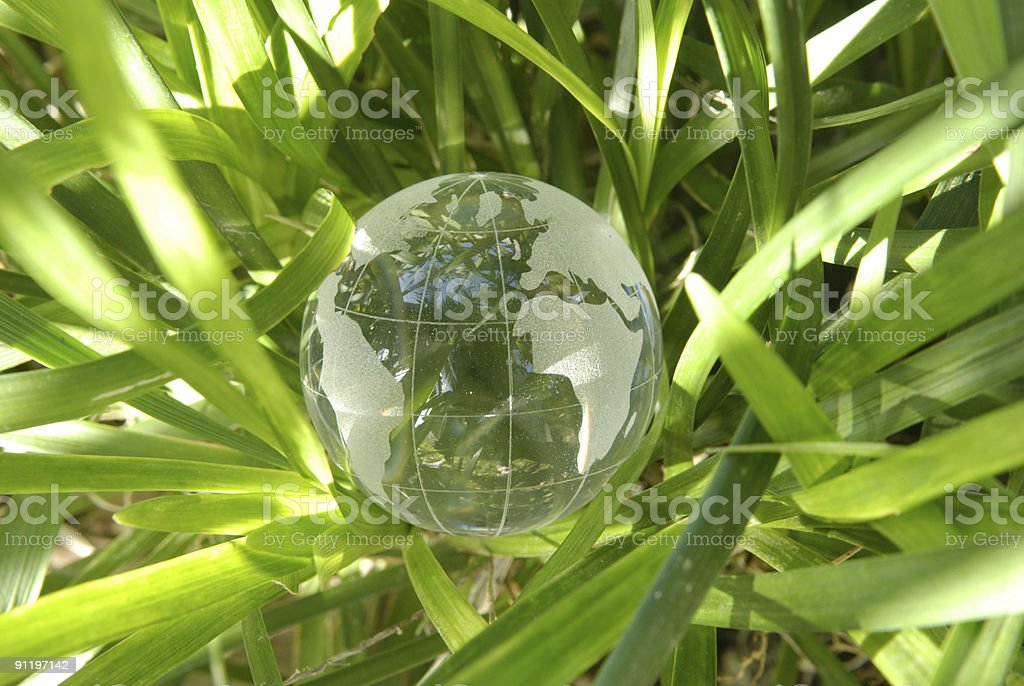 Globe in the grass royalty-free stock photo