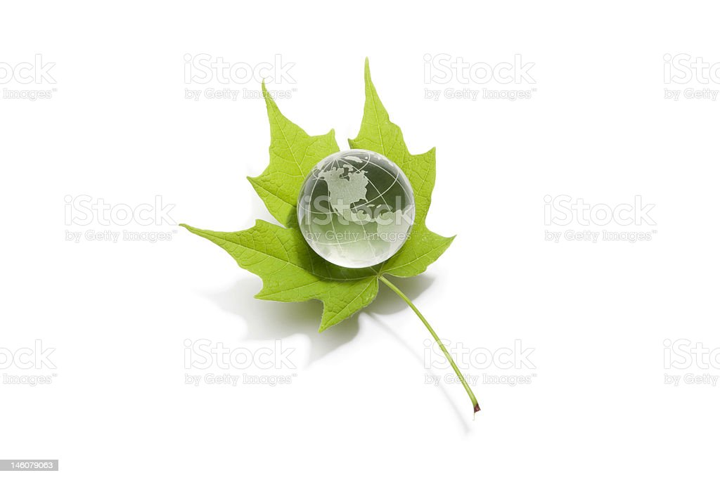 Globe on Leaf royalty-free stock photo