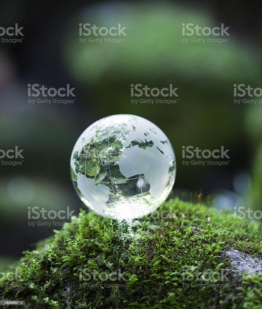 Globe on mossy rock royalty-free stock photo
