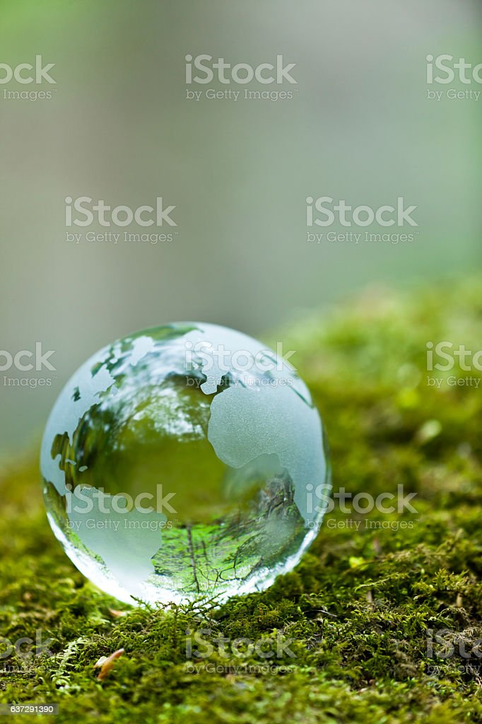 Globe on Mossy Rock stock photo