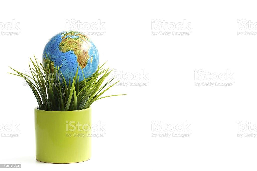 Globe on the green grass stock photo