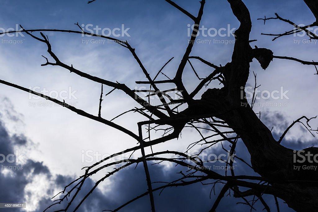 Gloom stock photo