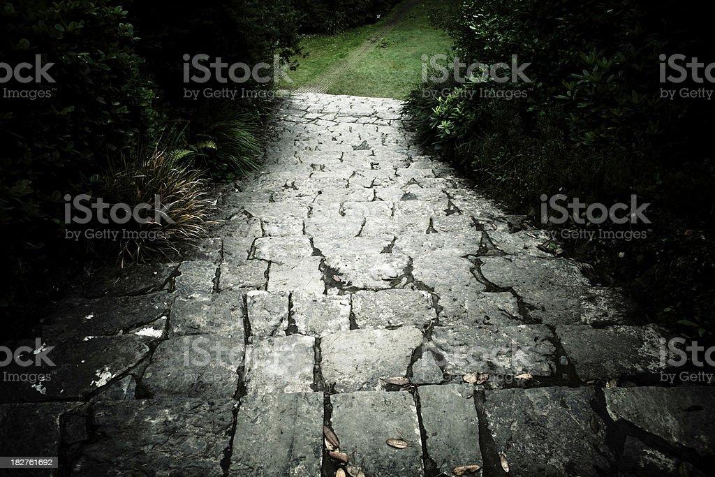 Gloomy garden path stock photo