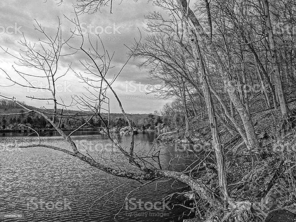Gloomy March Landscape stock photo