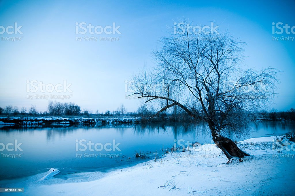Gloomy winterland royalty-free stock photo
