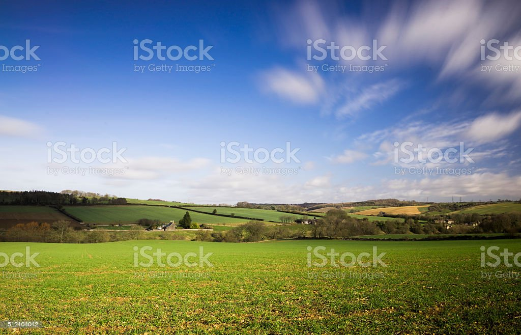 Gloucestershire Winter Crops stock photo