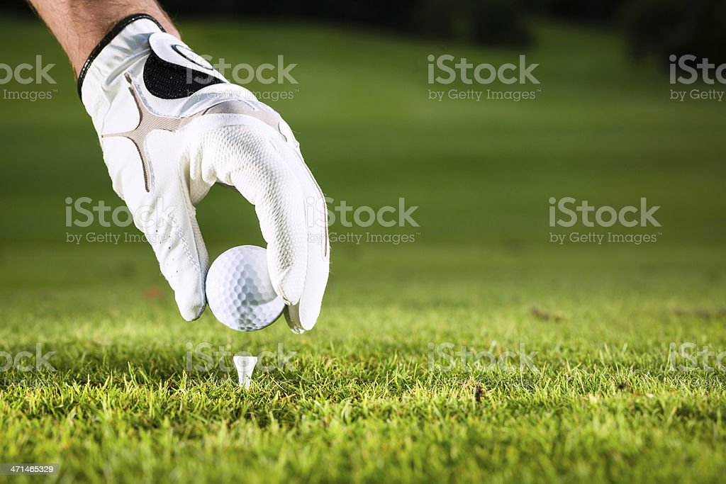 Gloved hand placing a golf ball on a tee on a golf course stock photo
