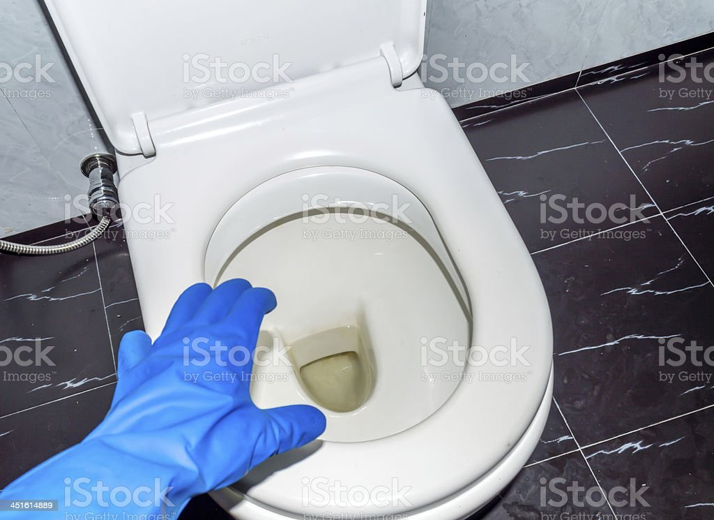 gloves hand with toilet commode 01 stock photo