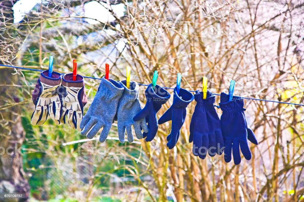 gloves on a line for drying stock photo