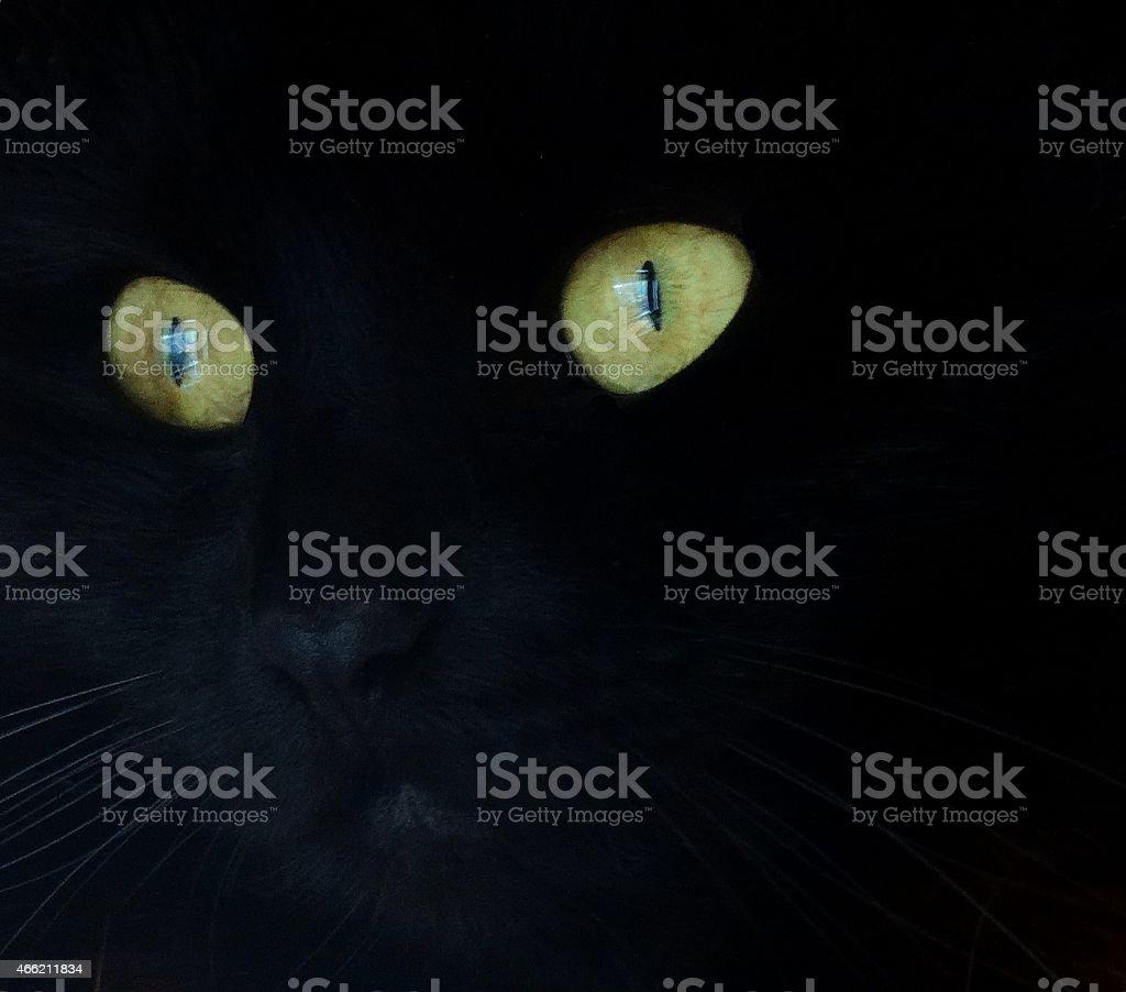 Glow in the Dark stock photo