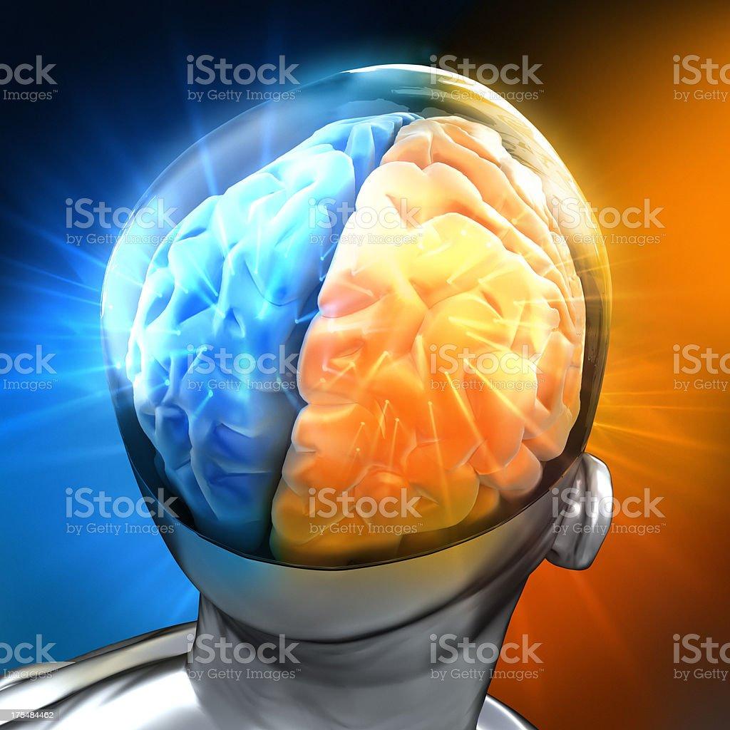 Glowing human brain royalty-free stock photo
