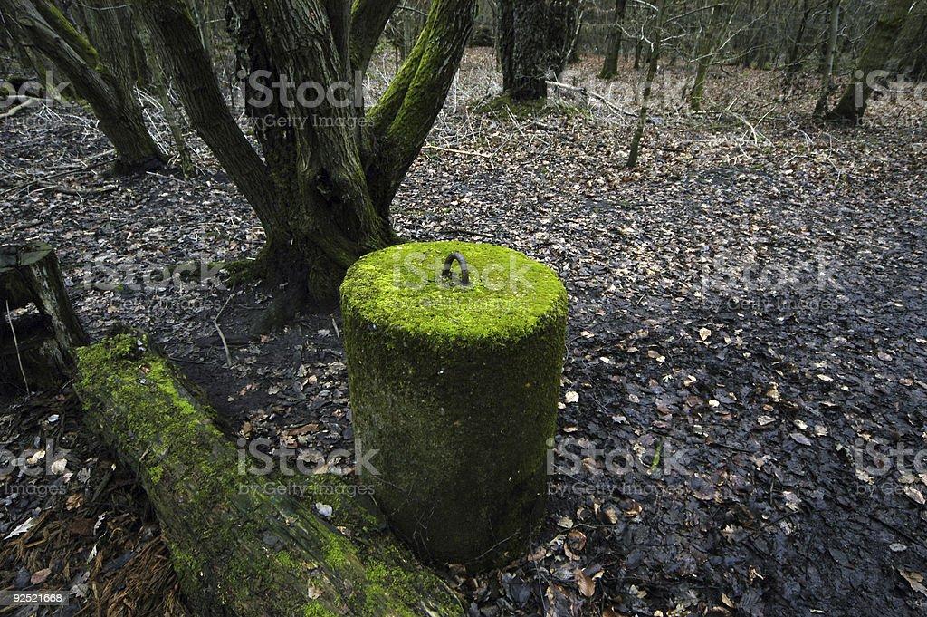 Glowing Mossy Pillar stock photo