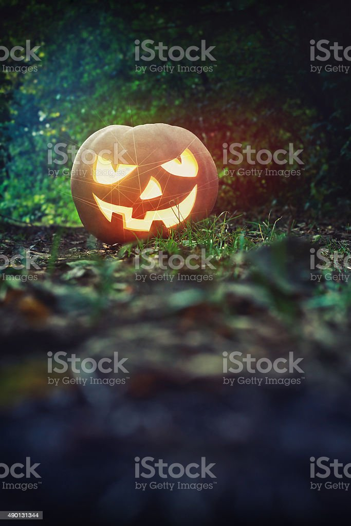 Glowing Pumpkin in the forest. Jack O Lantern for Halloween stock photo