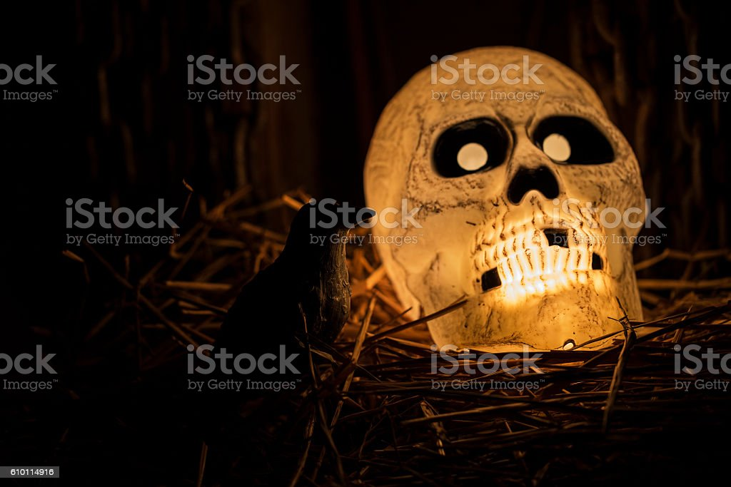 Glowing Skull and His Evil Black Crow stock photo