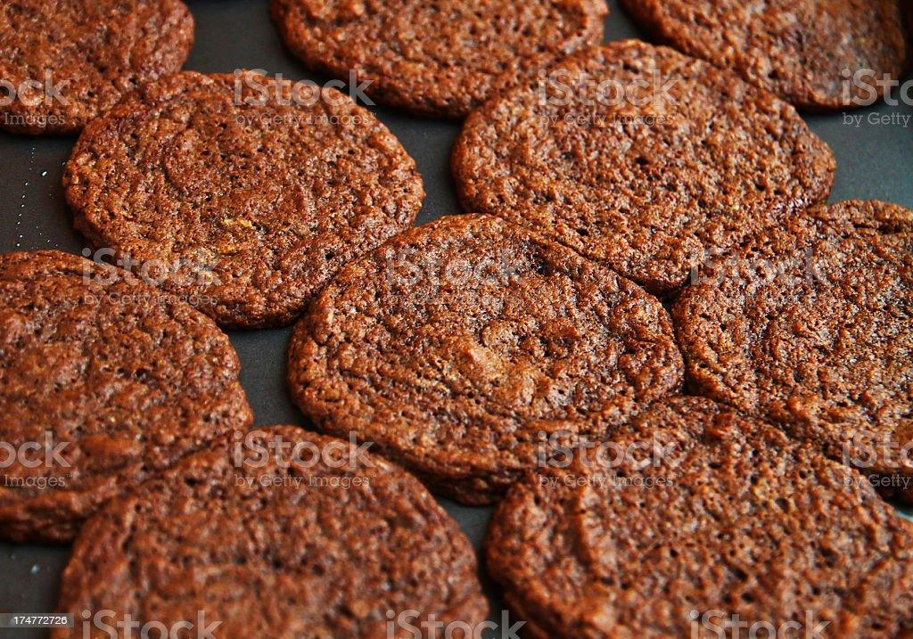 Gluten-Free Cocoa Cookies on Pan stock photo