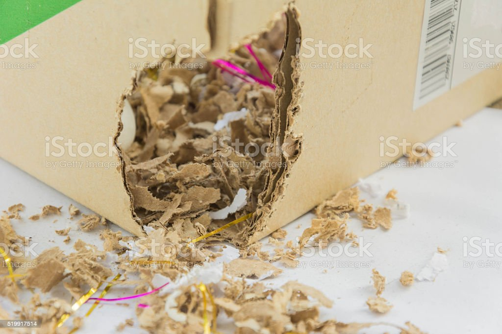 gnaw mark of mice stock photo