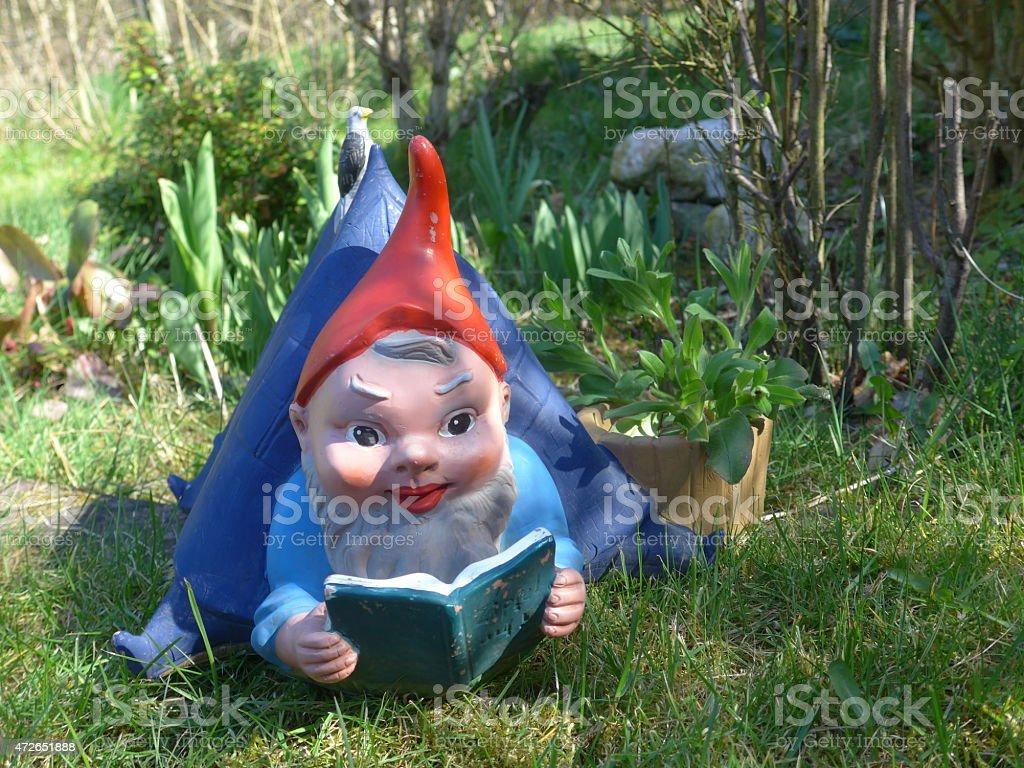 Gnom in the garden - Bild - stock photo