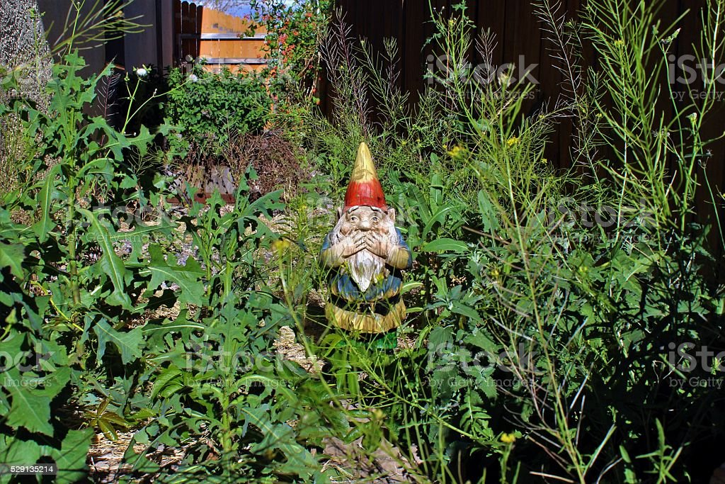 Gnome Disgusted by Overgrown Yard stock photo