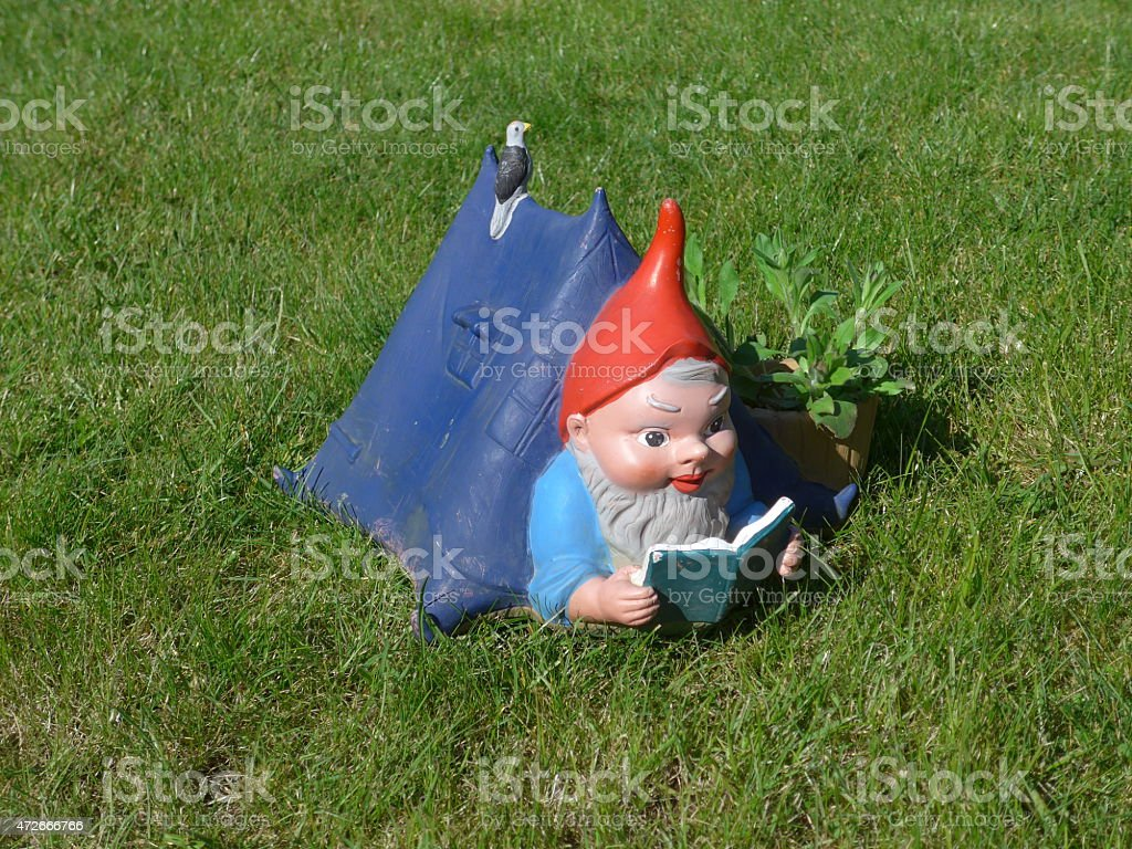 Gnome in the garden - Bild - stock photo