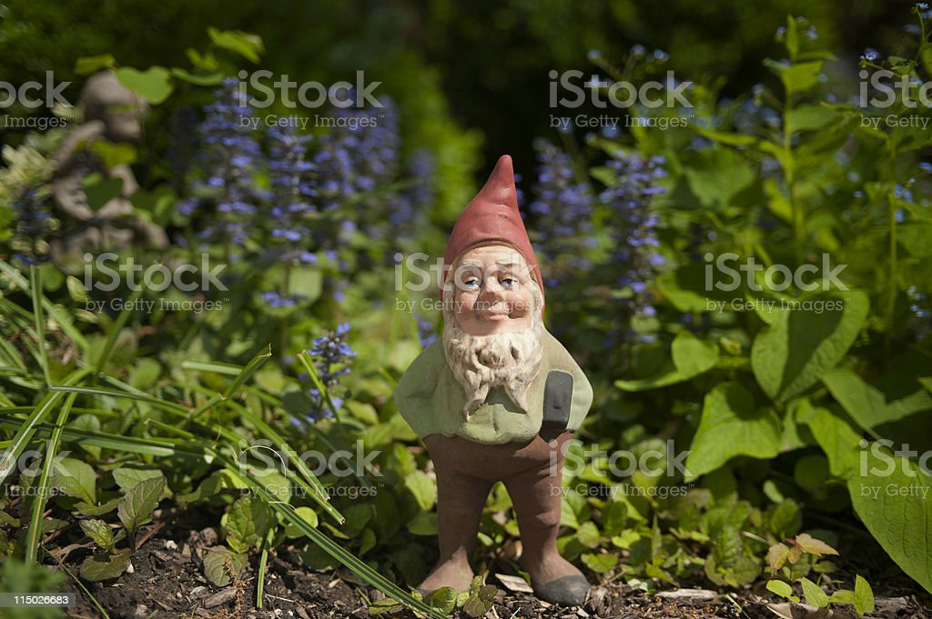 Gnome in the garden royalty-free stock photo